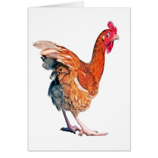 Aucune carte d'anniversaire de poulet de ressort