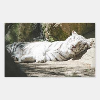 Autocollant blanc de tigre