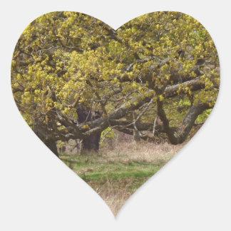 Autocollant de coeur de forêt