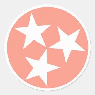 Autocollant de drapeau d'état du Tennessee de