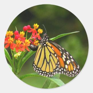 Autocollant de papillon de monarque