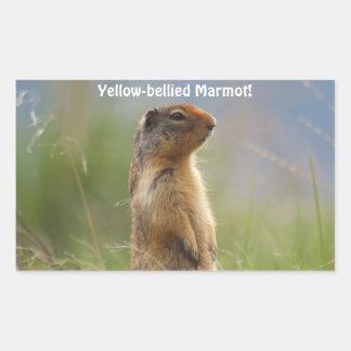 Autocollant de photo de faune de Marmot de