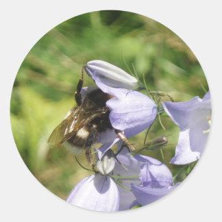 Autocollant de photo de fleur de bourdon