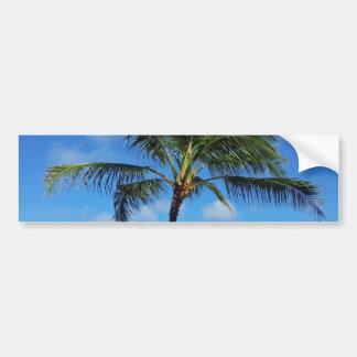 Autocollant De Voiture Arbres de noix de coco