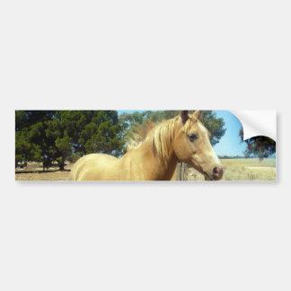 Autocollant De Voiture Beauté de cheval de palomino,