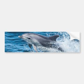 Autocollant De Voiture Éclaboussement de dauphin
