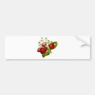 Autocollant De Voiture Feuille feuillu de feuille de fruit de nourriture