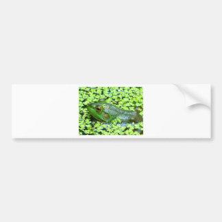 Autocollant De Voiture grenouille