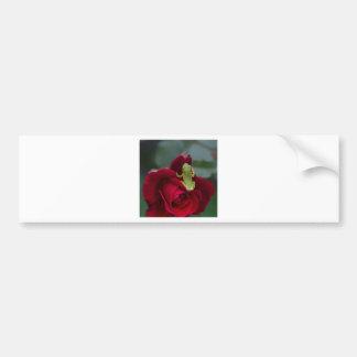 Autocollant De Voiture Grenouille d'arbre verte sur le rose rouge