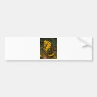 Autocollant De Voiture Hippocampe jaune