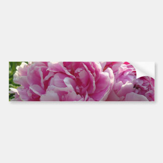 Autocollant De Voiture Jardin rose de pivoine