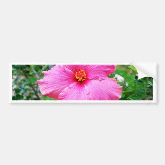 Autocollant De Voiture La pluie rose de fleur de ketmie arrose,
