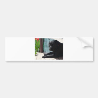 Autocollant De Voiture Labrador retriever noir personnalisable