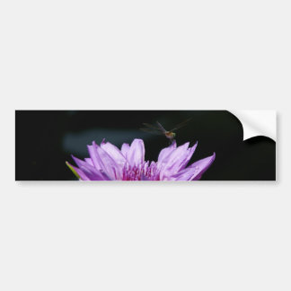 Autocollant De Voiture Libellule pourpre de nénuphar de Lotus
