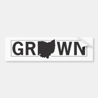 Autocollant De Voiture L'Ohio développé. Cincinnati a augmenté