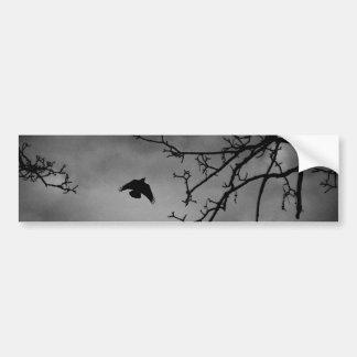 Autocollant De Voiture Oiseau mystérieux en vol