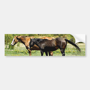 autocollants stickers pour voiture cheval. Black Bedroom Furniture Sets. Home Design Ideas
