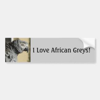 Autocollant De Voiture Perroquet de gris africain du Congo avec les