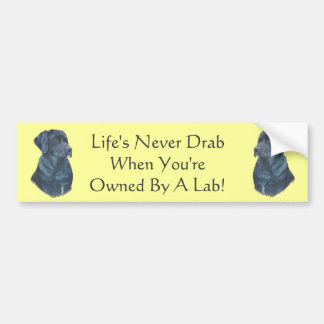 Autocollant De Voiture slogan original d'amusement de Labrador de