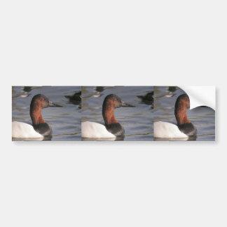 Autocollant De Voiture Yeux rouges lumineux du canard de Canvasback