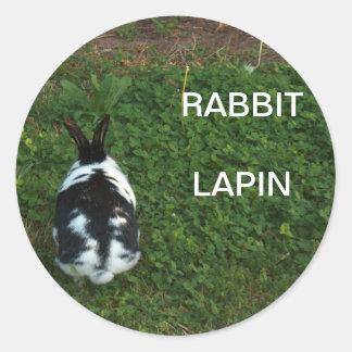 Autocollant/Lapin Sticker Rond
