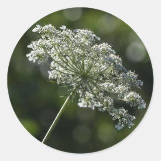 Autocollants blancs de fleur sauvage de dentelle