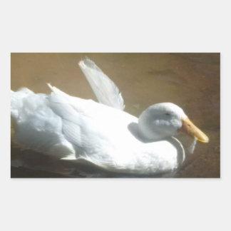 Autocollants de canard de natation