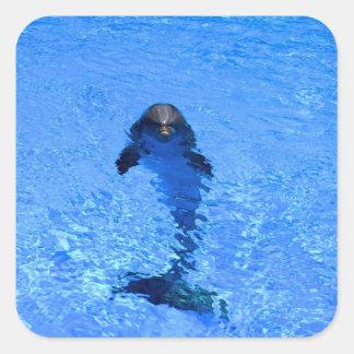 Autocollants de dauphin