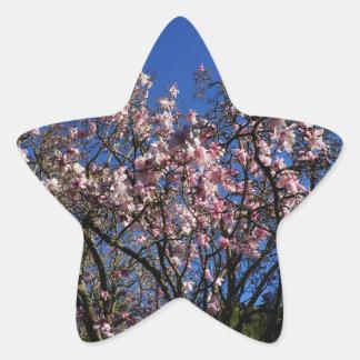 Autocollants du dawsoniana #4 de magnolia