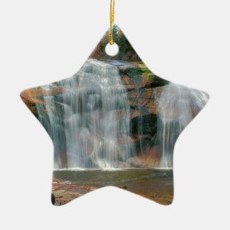 Automnes purs d'automne de rivière de nature ornement étoile en céramique