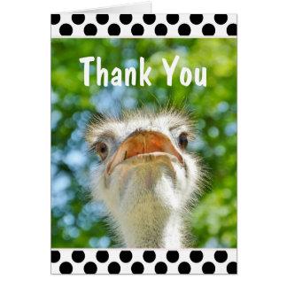 Autruche drôle - carte de remerciements