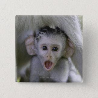 Badge Carré 5 Cm Babouin de bébé sous sa mère