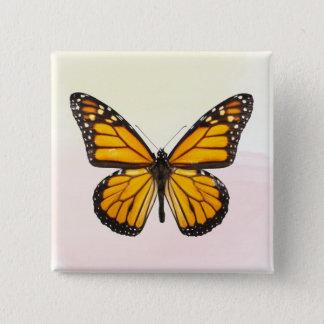 Badge Carré 5 Cm Beau noir orange de papillon de monarque