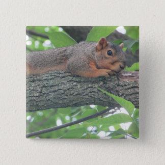 Badge Carré 5 Cm Bouton mignon d'écureuil