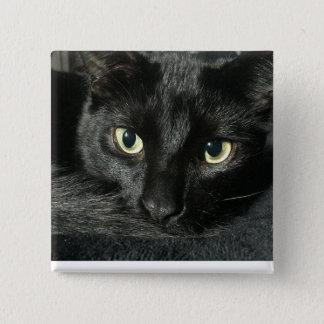 """Badge Carré 5 Cm Chat somnolent 2"""" goupille carrée"""
