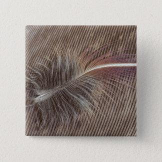 Badge Carré 5 Cm De Brown de plume toujours la vie pâle