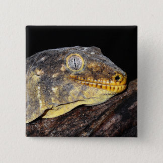 Badge Carré 5 Cm Geckos géants