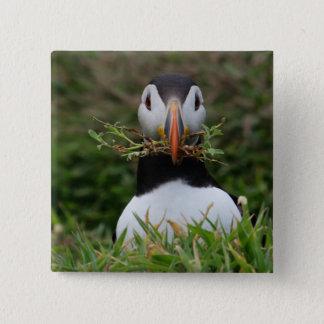 Badge Carré 5 Cm Macareux de constructeur de nid