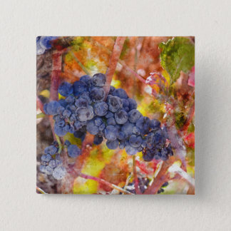 Badge Carré 5 Cm Raisins de vin rouge sur la vigne
