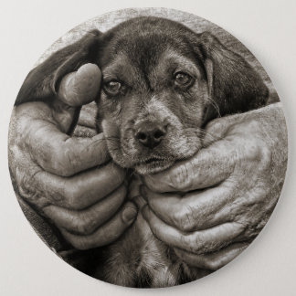 Badge Rond 15,2 Cm Mon art photographique de chiot de beagle d'ami