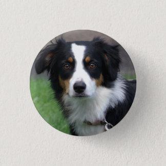 Badge Rond 2,50 Cm Goupille de chien