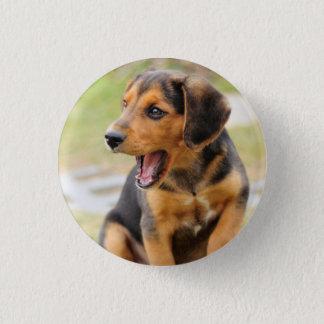 Badge Rond 2,50 Cm Insigne avec le chien