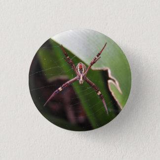 Badge Rond 2,50 Cm Insigne croisé de l'araignée de St Andrew