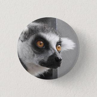 Badge Rond 2,50 Cm Insigne de lémur