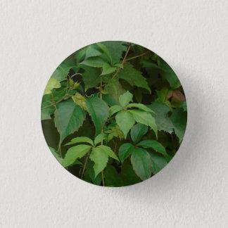 Badge Rond 2,50 Cm le vert laisse à boho d'automne le celtic mignon