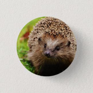 Badge Rond 2,50 Cm Pin de Hedghog