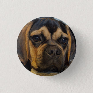 Badge Rond 2,50 Cm Puggle