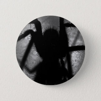 Badge Rond 5 Cm Arachnophobia…