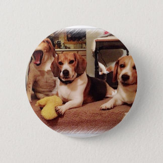 Badge Rond 5 Cm Beaux beagles