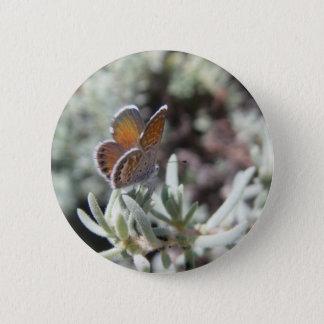Badge Rond 5 Cm Bouton bleu pygméen occidental de papillon
